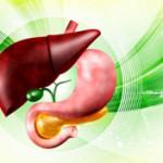 沈黙の臓器だけに…気を付けたい肝臓の機能低下